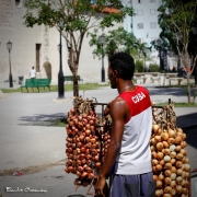 Havana# 0084